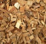 Eucalyptus Wood Chips (Sawmill)