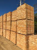 Embalagens de madeira Eucalipto Ar Seco (AD) À Venda