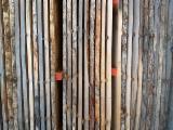 KD Oak Planks, 50 mm
