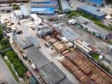 Vendo Tronchi Construzioni Pino - Legni Rossi, Abete - Legni Bianchi North-West