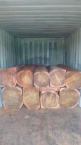 Kosso/Doussie Square Logs, 50-80 cm
