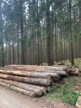 Venta Troncos Para Aserrar Pino Silvestre - Madera Roja, Abeto - Madera Blanca Lituania
