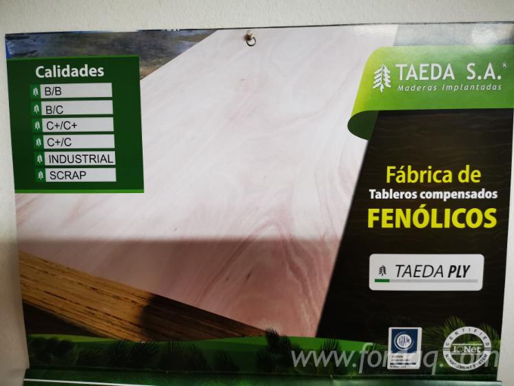 Vend Contreplaqué Naturel Pin Taeda 9; 12; 15; 18; 25 mm Argentine