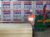 Spruce (Whitewood) Round Log or Square Log Siding up to 6 m long