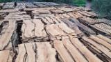 Cele mai noi oferte pentru produse din lemn - Fordaq - IBA Impex/Integrated Business Applications Limited - Vindem Cherestea Tivită Măslin 12-140 mm