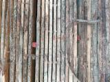 KD Oak Planks, ABC, 60 mm