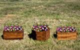 Meubels en Tuinproducten - Kastanje, Bloempot - Planter