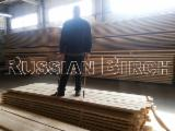 Birch Lumber, KD, NHLA Grading, 4/4; 5/4; 6/4; Sap Selected