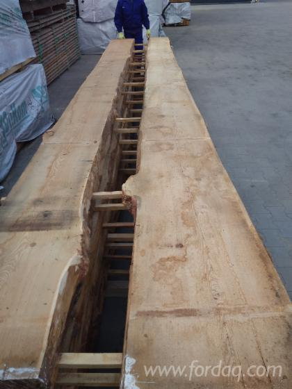 Modrzew Syberyjski - 63mm grubość - 6m długości