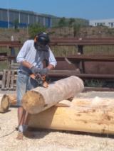 Casa De Troncos Estilo Canadense Pinus - Sequóia Vermelha, Abeto - Whitewood Madeira Macia Européia Sérvia