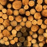 Pine, Fir, Spruce Industrial Logs, 8-60 mm