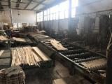 Bongioanni Woodworking Machinery - Used Bongioanni Log Band Saw Horizontal, 1998