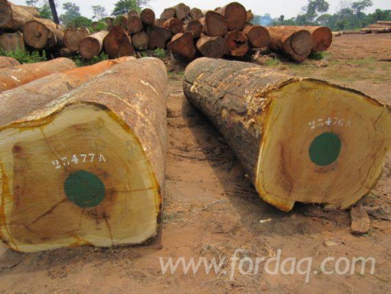 Vend Grumes De Trituration Iroko Cameroun