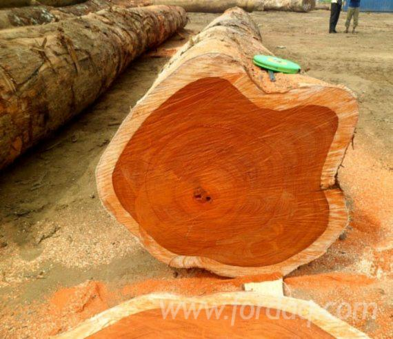 Padouk-Square-Logs