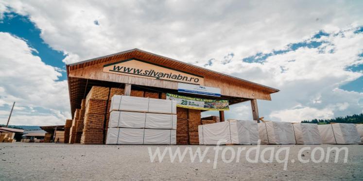 Vender Tábuas (pranchas) Abeto , Abeto - Whitewood FSC 17-46 mm Bistrita-Nasaud Roménia