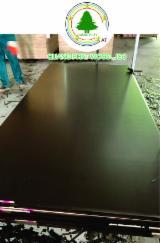 Acacia/Pine Black Film Faced Plywood, 7-40 mm