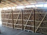 Eukaliptus Drewno Kominkowe/Kłody Łupane Ukraina