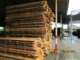 KD Beech Planks, ABC, 1000+ mm