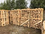 Grab, Bukva, Hrast Drva Za Potpalu/Oblice Cepane Rumunija