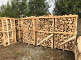 Hain- Und Weissbuche, Eiche Brennholz Gespalten