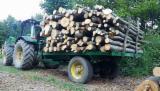 null - Ogrevno Drvo, Bukva, Hrast, Turski Hrast