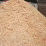 Wood Saw Dust (Pine), 2000 ton/spot