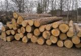 null - Pine/Spruce Industrial Logs, 2.5+ m