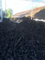 Vender Carvão De Madeira Carvalho Odessa Ucrânia
