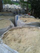 Radiata Pine Wood Sawdust for Sale
