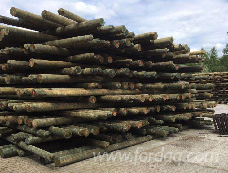 Vacuum-Treated-Telephone-Electrical-Pine-Poles