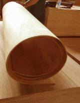 Keruing Flexible Plywood, 1220x2440 mm