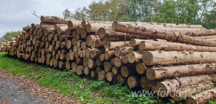 Buying-Spruce-Saw-Logs