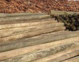 New Zealand Radiata Pine Poles, H4/H6 Treated, 250-350 mm