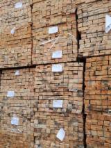 Comprar Pinus - Sequóia Vermelha, Abeto - Whitewood 36; 38 mm Ukrain, Belarus, Russia, Baltics