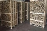 Hornbeam KD Cleaved Firewood, 25 cm