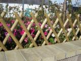 Vindem Garduri - Paravane Rășinoase Europene