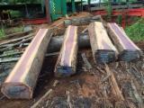 Purpleheart Round Saw Logs, 40+ cm