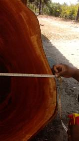 40.000 m³ of African Mohogany and Teak from Brazil