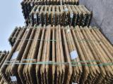 Vender Madeira Redonda De Formato Cónico Pinus - Sequóia Vermelha Letônia
