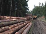Za Rezanje, Jela -Bjelo Drvo