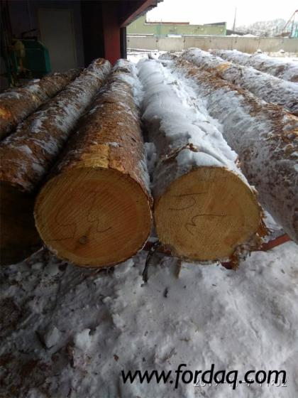 Pine-Lumber-from-Large-Logs--Shop-Graded-5-4%22--6-4%22