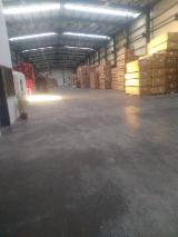 Vender Folheado Natural Carvalho Vermelho Corte Plano, Liso