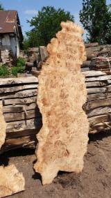 Hardwood  Unedged Timber - Flitches - Boules Kiln Dry KD - Mappa Burl, KD Black Poplar Boules, 50+ mm