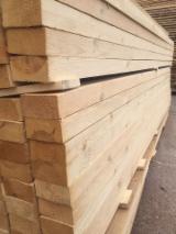 Vender Pinus - Sequóia Vermelha, Abeto - Whitewood 16-50 mm