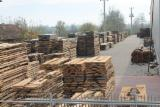 Beech Lumber Manufacturer and Exporter Company in Turkey