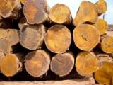 Stämme Für Die Industrie, Faserholz, Azobé , Bilinga , Bubinga