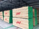 KD Edged-Steamed Beech Planks, 100x2300+ mm