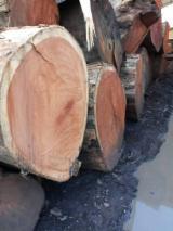 Square Logs, Doussie , DINplus