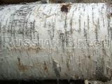 Birch Split Firewood, Kiln Dried, Packed in Crates or Bags from Russia