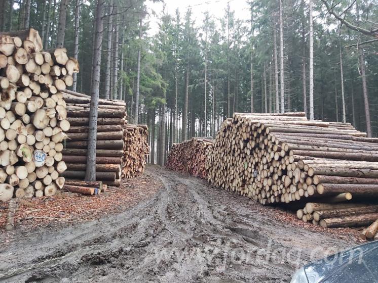 Vender Troncos Serrados Larix , Pinus - Sequóia Vermelha, Abeto - Whitewood República Checa Moravia